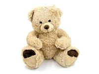 099848645-Teddy-50-cm